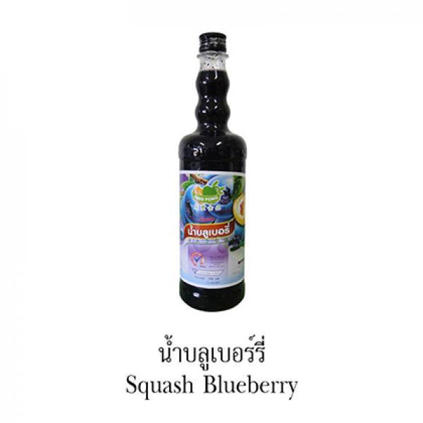 Siro Việt Quất (Squash Blueberry) - DING FONG